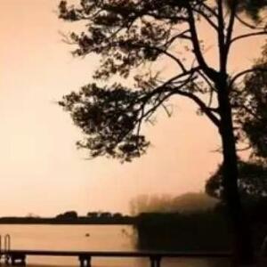 静静如水看风云