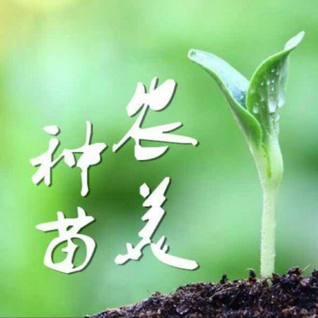 农美种苗(岳阳)17378299931